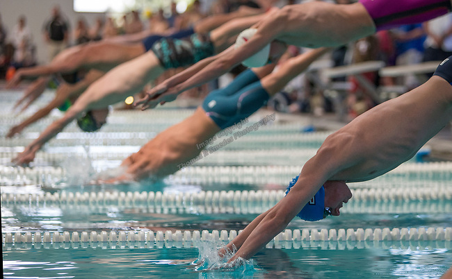 A photograph from the State Swimming Meet in Carson City on Saturday, May 20, 2017.