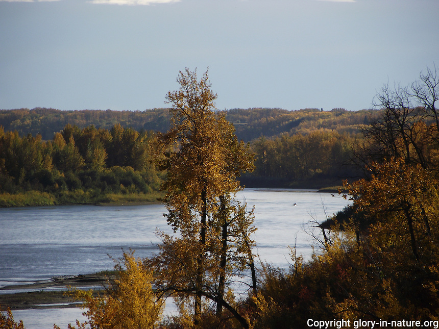 View of the fall colors on the North Saskatchewan River.