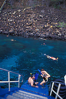 Snorkeling off the Fairwinds boat tour at Kealakekua Bay, Big Isand