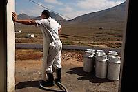 Spanien, Kanarische Inseln, Fuerteventura, Käseherstellung inTindaya