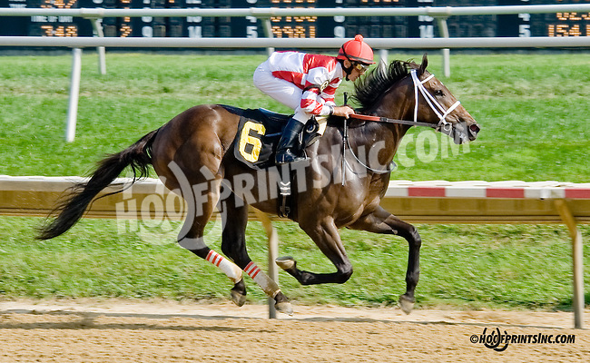 Ruby's Escapade winning at Delaware Park on 9/4/14