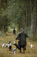 Europe/France/Centre/41/Loir-et-Cher/Sologne/Env Dhuizon: Départ pour une battue au gros - AUTO N°A29 - Chasseur et meute de chiens de chasse