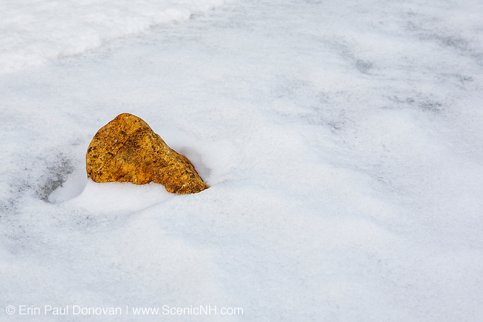 Rock sticking out of snow along the Saco River in Crawfrod Notch State Park in the White Mountains, New Hampshire USA.