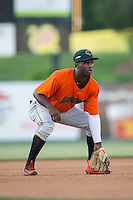 Augusta GreenJackets third baseman Kelvin Beltre (29) on defense against the Kannapolis Intimidators at Intimidators Stadium on May 30, 2016 in Kannapolis, North Carolina.  The GreenJackets defeated the Intimidators 5-3.  (Brian Westerholt/Four Seam Images)