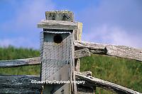 01715-01502 Bird nest box with predator guard    NC