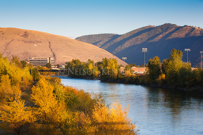 "Looking up the Clark Fork River as it flows through downtown Missoula, Montana. Trees along the river in fall color. Mount Jumbo and the ""L"" on the east edge of the Missoula valley."