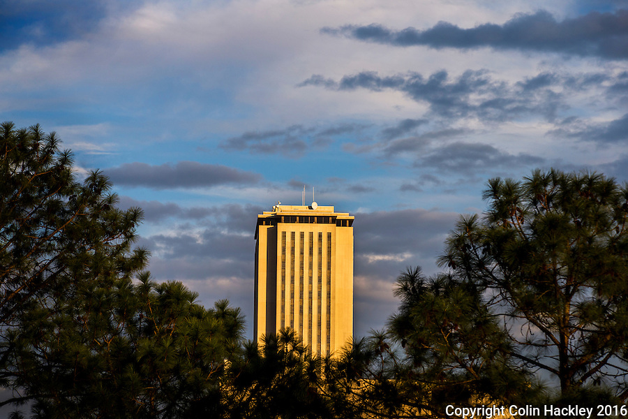 TALLAHASSEE, FLA. 1/14/16-A view through the pines to the Florida Capitol in Tallahassee.<br />