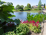 Royal Horticultural Society gardens at Hyde Hall, Essex, England, UK - Upper Pond