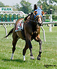 Sweet Soliloquy at Delaware Park on 8/18/14