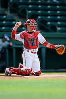 Catcher Jordan Procyshen (17) of the Greenville Drive in a game against the Asheville Tourists on Friday, April 24, 2015, at Fluor Field at the West End in Greenville, South Carolina. Greenville won, 5-2. (Tom Priddy/Four Seam Images)