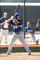 Bryant Hernandez - Los Angeles Dodgers - 2010 Instructional League.Photo by:  Bill Mitchell/Four Seam Images..
