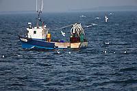 Europe/France/Bretagne/56/Morbihan/ Belle-Ile-en -Mer:  Chalutier au large de Belle-Ile