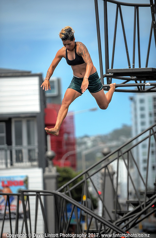 Gayle Broughton. Sevens celebration week Wharf Jump on Wellington harbour waterfront in Wellington, New Zealand on Friday, 27 January 2017. Photo: Dave Lintott / lintottphoto.co.nz