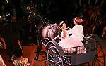 53rd Annual Vienese Opera Ball