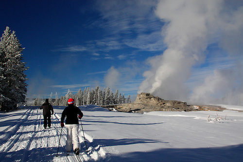 Cross country skiers head toward Castle Geyser at Yellowstone National Park, Wyoming