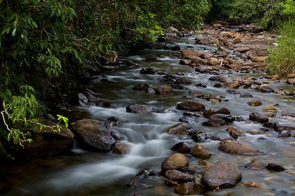 Iuna_ES, Brasil...Corrego ao lado de trecho da rota imperial...A stream next to the ancient Rota Imperial...Foto: LEO DRUMOND / NITRO