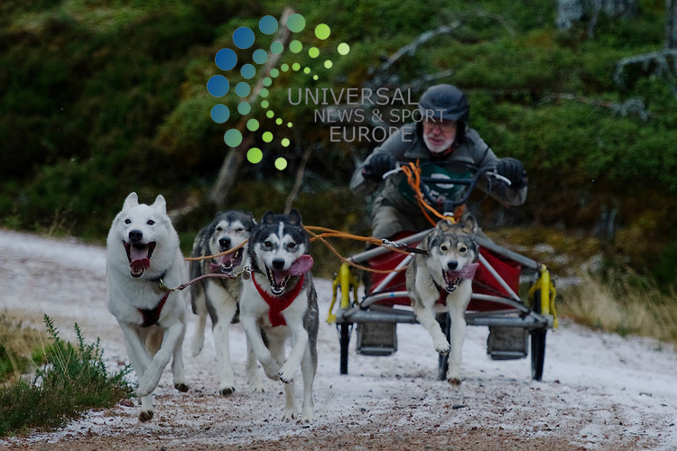 Aviemore Dog Sled Rally where more than 200 teams of Siberian Huskies, Malamutes, Greenland and Cross breeds race through Glenmore Forest Park on the shores of Loch Morlick, Aviemore, Highlands, Scotland, 21st January, 2012..Picture:Scott Taylor Universal News And Sport (Europe) .All pictures must be credited to www.universalnewsandsport.com. (Office)0844 884 51 22.