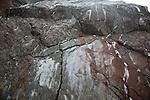 Veins of gypsum in Lower Lias rocks Watchet, Somerset, England