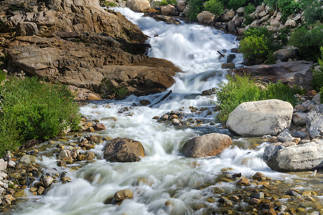 Roaring River, summer morning, Rocky Mountain National Park, Colorado, USA