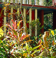The Las Pozas jungle engulfs Edward James' own house in the centre of the garden