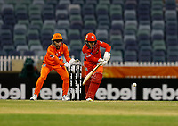 1st November 2019; Western Australia Cricket Association Ground, Perth, Western Australia, Australia; Womens Big Bash League Cricket, Perth Scorchers versus Melbourne Renegades; Tammy Beaumont of the Melbourne Renegades plays to the on side during her innings