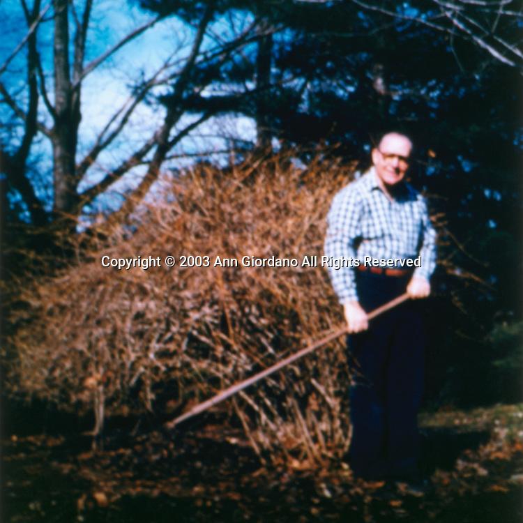 Retired man standing in garden holding rake in Autumn