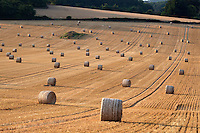 United Kingdom, England, Oxfordshire, Cotswolds, Swinbrook: Round hay bales | Grossbritannien, England, Oxfordshire, Cotswolds, Swinbrook: Feld mit Heuballen