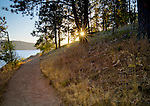 Tubbs Hill Nature Park Trail at sunset, Coeur d'Alene, Idaho.