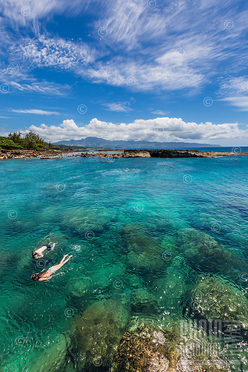 Snorkelers swim at Shark's Cove on the North Shore of O'ahu on a sunny day.