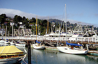 The Sausalito Yacht Harbor in Sausalito, California with the Sausalito hills in background. sailing, water sports, boat, boats, port, urban seascape. California.
