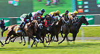 ELMONT, NY - JUNE 09: Hello Don Julio, #6, ridden by Kendrick Carmouche, wins the Woodford Reserve Manhattan Stakes on Belmont Stakes Day at Belmont Park on June 9, 2018 in Elmont, New York. (Photo by Sue Kawczynski/Eclipse Sportswire/Getty Images)