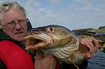 Foto: VidiPhoto..KVALHEIM - Nederlandse sportvissers actief in de fjorden bij Kvalheim, ten noorden van Bergen in Noorwegen. Het Scandinavische land trekt ieder jaar meer sportvissers uit Nederland en andere Europese landen vanwege de grote en diverse soorten vissen die er te vangen zijn. Om overbevissing te voorkomen heeft de Noorse overheid drastische maatregelen ingesteld. Sportvissers mogen nog maar 15 kilo visfilet per persoon mee naar huis nemen en er wordt streng gecontroleerd op het handhaven van de minimum maten. Met name sportvissers uit de Oost-Europese landen hebben jarenlang de Noorse viswateren uitgeput door massaal zoveel mogelijk grote en kleine vissen weg te vangen en de filet vervolgens in eigen land te verkopen.