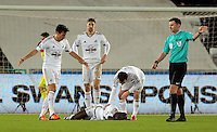 Match referee Michael Oliver (R) gives a free kick after Modou Barrow of Swansea who is on the ground was fouled during the Barclays Premier League match between Swansea City and Watford at the Liberty Stadium, Swansea on January 18 2016
