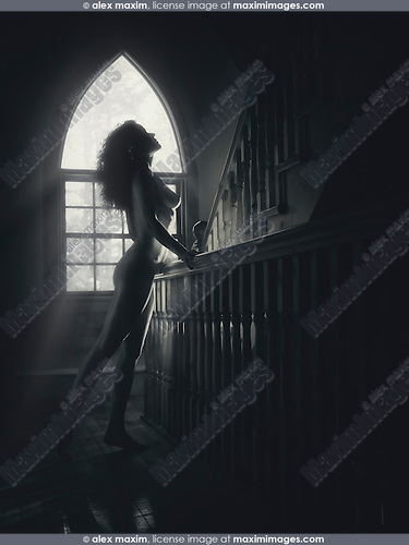 Sunlit silhouette of a beautiful nude woman profile on a staircase in a house