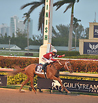 Pegasus World Cup Invitational, The World's Richest Thoroughbred Horse Race At Gulfstream Park