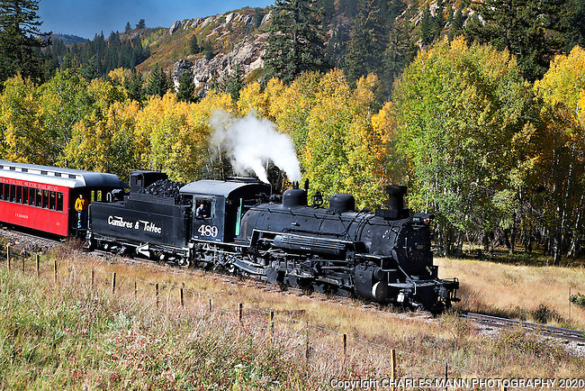 Visitors from all over the country and from overseas come to see and ride the Cumbres & Toltec Narrow Gauge Steam Railroad in Chama, New Mexico. Engine number 489 haous teh train through an aspen glade on a mid September run up the mountain.