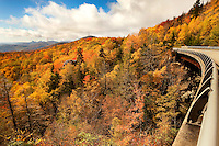 The Linn Cove Viaduct snakes its way through the fall leaf foliage of the North Carolina mountains (Blue Ridge Parkway) in autumn 2009, when the mountain forests and trees transform themselves a tapestry of brilliant orange, red and yellow autumn colors. Linn Cove Viaduct, considered by some as the Grandfather Mountain viaduct or the Blue Ridge Parkway viaduct, is a 1243-foot concrete segmental bridge built in 1979 to avoid environmentally damaging Grandfather Mountain. It is considered one of the most complicated concrete bridges ever built. Grandfather Mountain is about a two-hour drive from Charlotte.