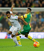 Martin Olsson of Norwich City and Wayne Routledge of Swansea City during the Barclays Premier League match between Norwich City and Swansea City played at Carrow Road, Norwich on November 7th 2015