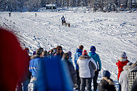 Chandler Wappett on the trail on the way to the finish of the 2018 Junior Iditarod in Willow, Alaska. Sunday February 25, 2018<br /> <br /> Photo by Jeff Schultz/SchultzPhoto.com  (C) 2018  ALL RIGHTS RESERVED