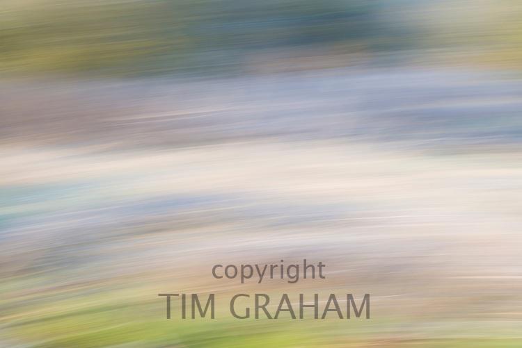 FINE ART PHOTOGRAPHY by Tim Graham