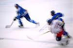 Hockey su ghiaccio, disciplina olimpica invernali. Sledge Hockey, winter olympic discipline.