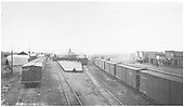 Early view of Antonito depot with freight trains of many boxcars on each side.  Diamond stacked locomotives in view.<br /> D&amp;RG  Antonito, CO  1890-1899