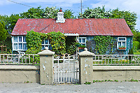 Corrugated iron cottage, near Taghmon, Southern Ireland