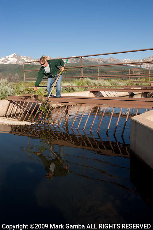 Ashley Baker on her daily rounds cleaning and checking the fish screens on the irrigation canals on the upper Salmon River upstream of Stanley Idaho.  Sawtooth Range in the background.