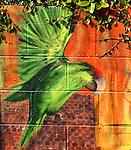 A Street Bestiary