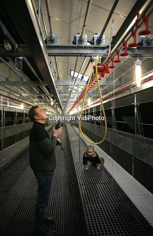 Foto: VidiPhoto..BARNEVELD - Veehouder Wijnand van Maanen uit Barneveld aan het werk in zijn gloednieuwe opfokstal voor kuikens. De ondernemer is naast melkvee gestart met het opfokken van kuikens via een gloednieuw stalsysteem. Delen van de stal kunnen opgeklapt worden, zodat de scharrelkuikens steeds hoger moeten springen om voedsel en water te krijgen. Zo wordt de toekomstige legkippen geleerd dat ze hoog moeten springen om straks hun nesten te kunnen bereiken. Het nieuwe systeem dat de toepasselijke naam Jump Start heeft gekregen, is geïnstalleerd door Rijnvallei in Wageningen en geleverd door Vencomatic BV uit Eersel. Van Maanen verzorgt de opfok van 30.000 kuikens voor broederij Ter Heerdt BV in twee stallen.