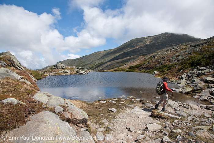 Appalachian Trail - A hiker passes Lakes of the Clouds, which is located along the Crawford Path in the White Mountains, New Hampshire USA during the summer months. Mount Washington is in the background.