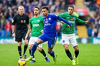 Cardiff City v Brighton and Hove Albion - 10.11.2018