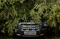SÃO PAULO, SP, 14.02.2014 – QUEDA DE ARVORE -  Uma árvore de grande porte caiu na rua Amâncio de Carvalho, próximo ao viaduto Tutóia, no bairro da Vila Mariana, após forte chuva que atingiu a zona sul de São Paulo na tarde desta quinta feira (13).energia da rua permanece desligada e a rua interditada. FOTO LEVI BIANCO - BRAZIL PHOTO PRESS