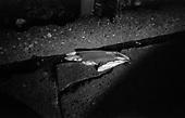 Warsaw 2010 Poland. The Warsaw Ghetto was established for the Jewish population of Warsaw by Germans during their II Word War occupation of Poland. It existed from  October 2,1940 until May 16, 1943. There are very few remnants left of the Ghetto. It covered today's city quarters of Muranow, Nowolipki, Mirow, Nowe Miasto and part of Center Warsaw. Zelazna street..photo Maciej Jeziorek/Napo Images.Warszawa 2010 Polska. Getto warszawskie za?ozone dla ludno?ci zydowskiej przez okupacyjne w?adze niemieckie istnialo na terenie Warszawy od 2 pa?dziernika 1940  do 16 maja 1943. Nie pozostaly po nim w zasadzie zadne fizyczne slady. Dzis to tereny  m.in. Muranowa, Nowolipek, Mirowa, Nowego Miasta i czesc scislego centrum Warszawy. Ulica Zelazna. fot. Maciej Jeziorek/Napo Images